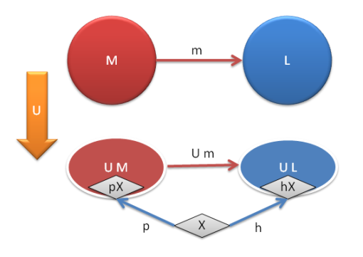 Universal construction of a free monoid generated by X