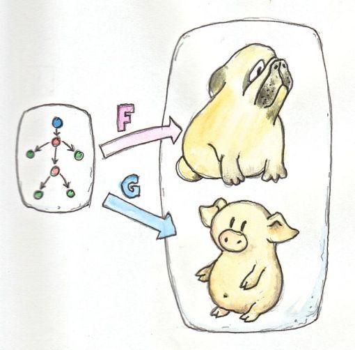 1_Functors