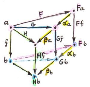 6_VerticalNaturality