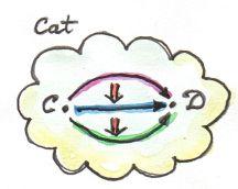 8_Cat-2-Cat
